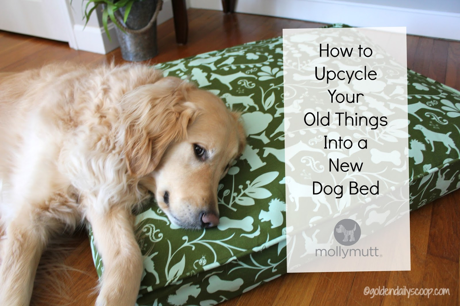 how to upcycle your old things into a new dog bed. Black Bedroom Furniture Sets. Home Design Ideas