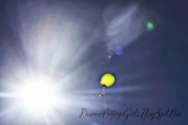 single yellow balloon against a blue sky and sun. | Infant loss | Trisomy 13 | RosevineCottageGirls.com
