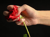 Taman bunga mawar untuk Magdalena