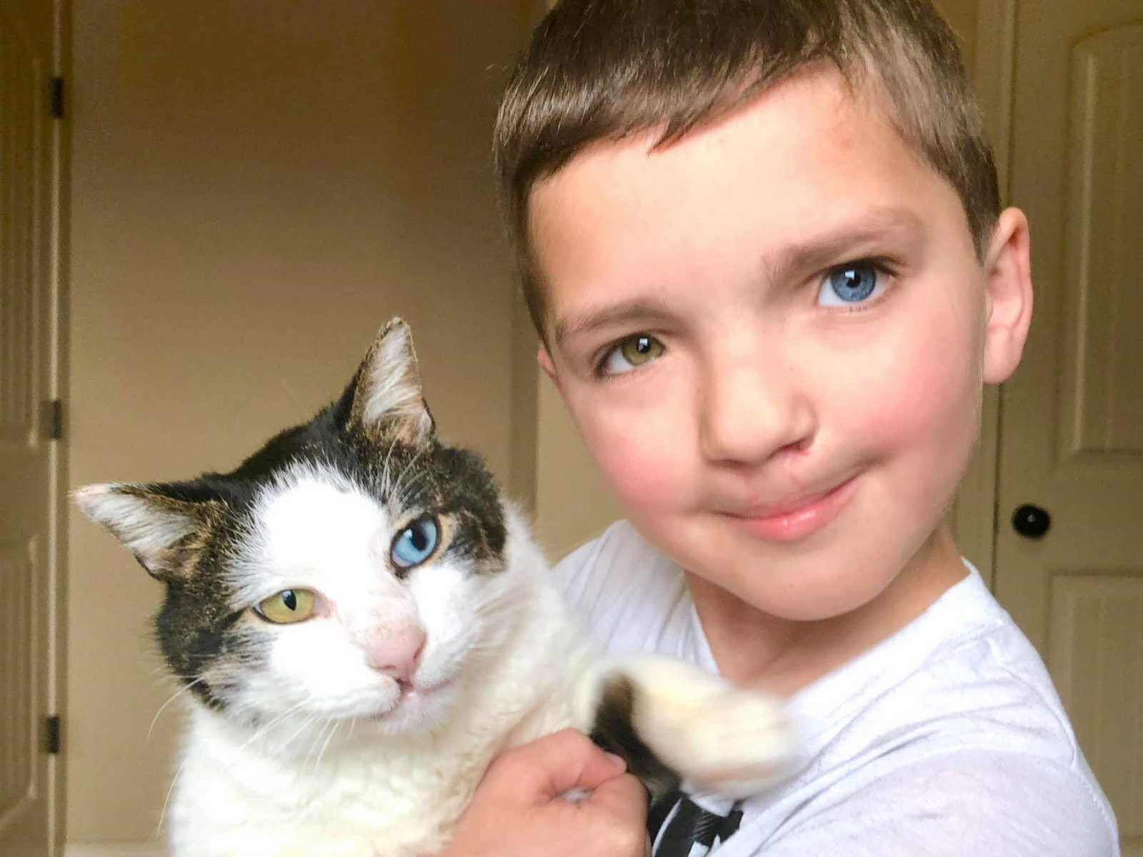 This Boy Was Bullied Because Of His Extraordinary Condition. His Life Changed When He Rescued A Cat With The Same Unique Traits.