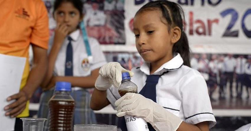 Jarabe de termitas son la sensación en feria escolar de ciencia y tecnología en el Vraem
