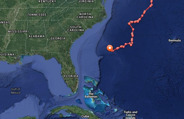 Great White Shark Mary Lee Tracking Map
