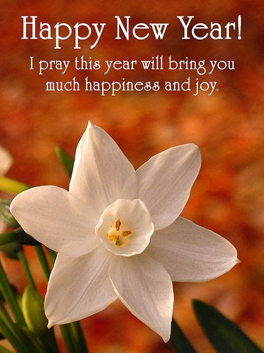 Best Girl Wallpapers Ever 2012 New Year Greetings