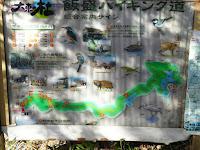 野崎観音・飯盛山ハイキングマップ