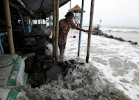 A villager walks on a stone barrier as sea water reaches her house in Mayangan village in Subang, Indonesia's West Java province, in this July 16, 2010 file photo. (Credit: Reuters/Beawiharta) Click to Enlarge.