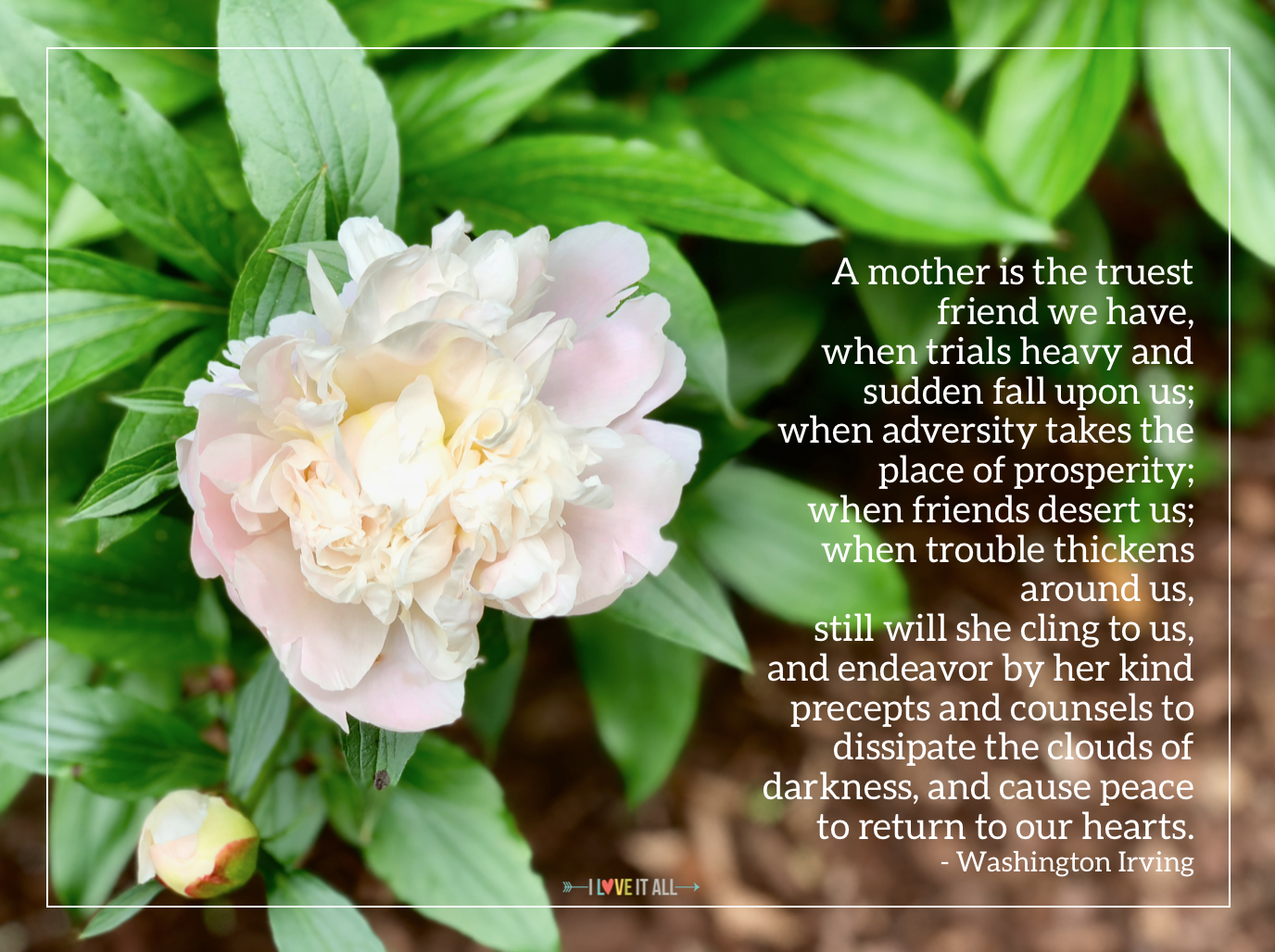 #Washington Irving #mom #mother quote #friend #love #quote #quotes #Mother's Day Quote #peony #Sunday Photos