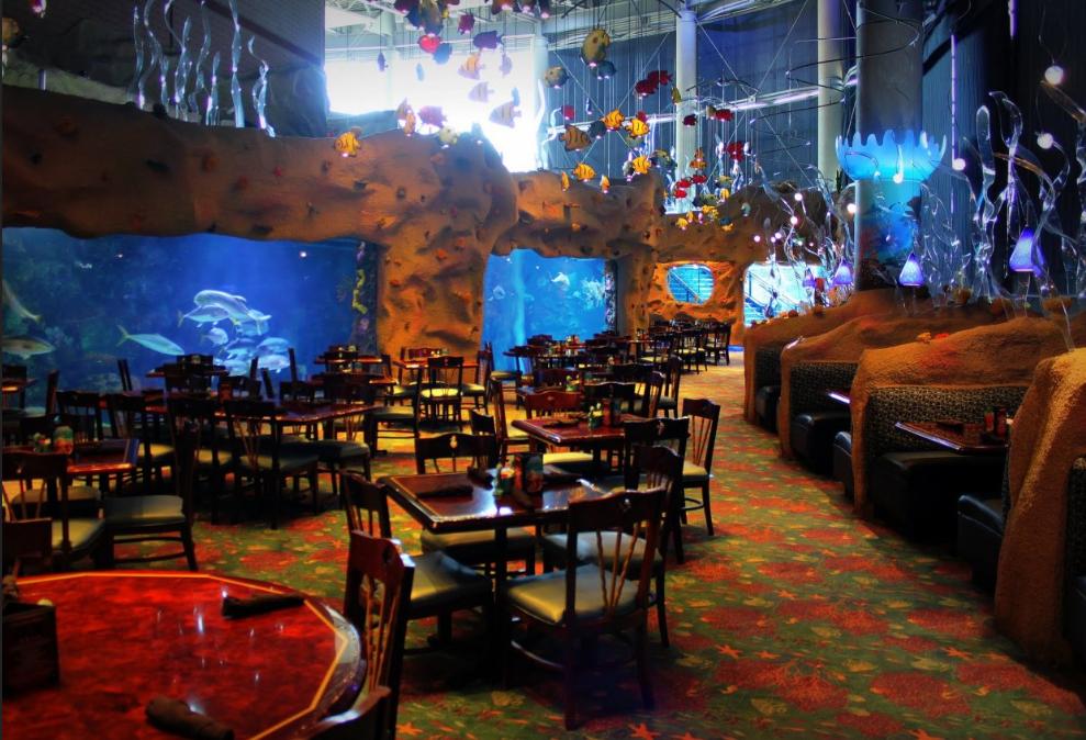 Downtown Aquarium Denver Aquarium Wedding Venue