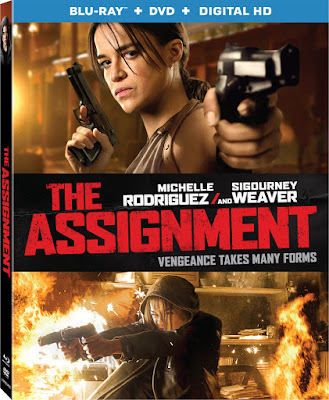 The Assignment 2016 Eng BRRip 480p 300mb ESub
