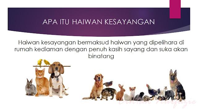 maksud haiwan kesayangan atau pet