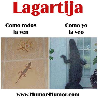 Lagartija (Humor)