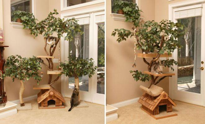 Cat House Amazing Interiors