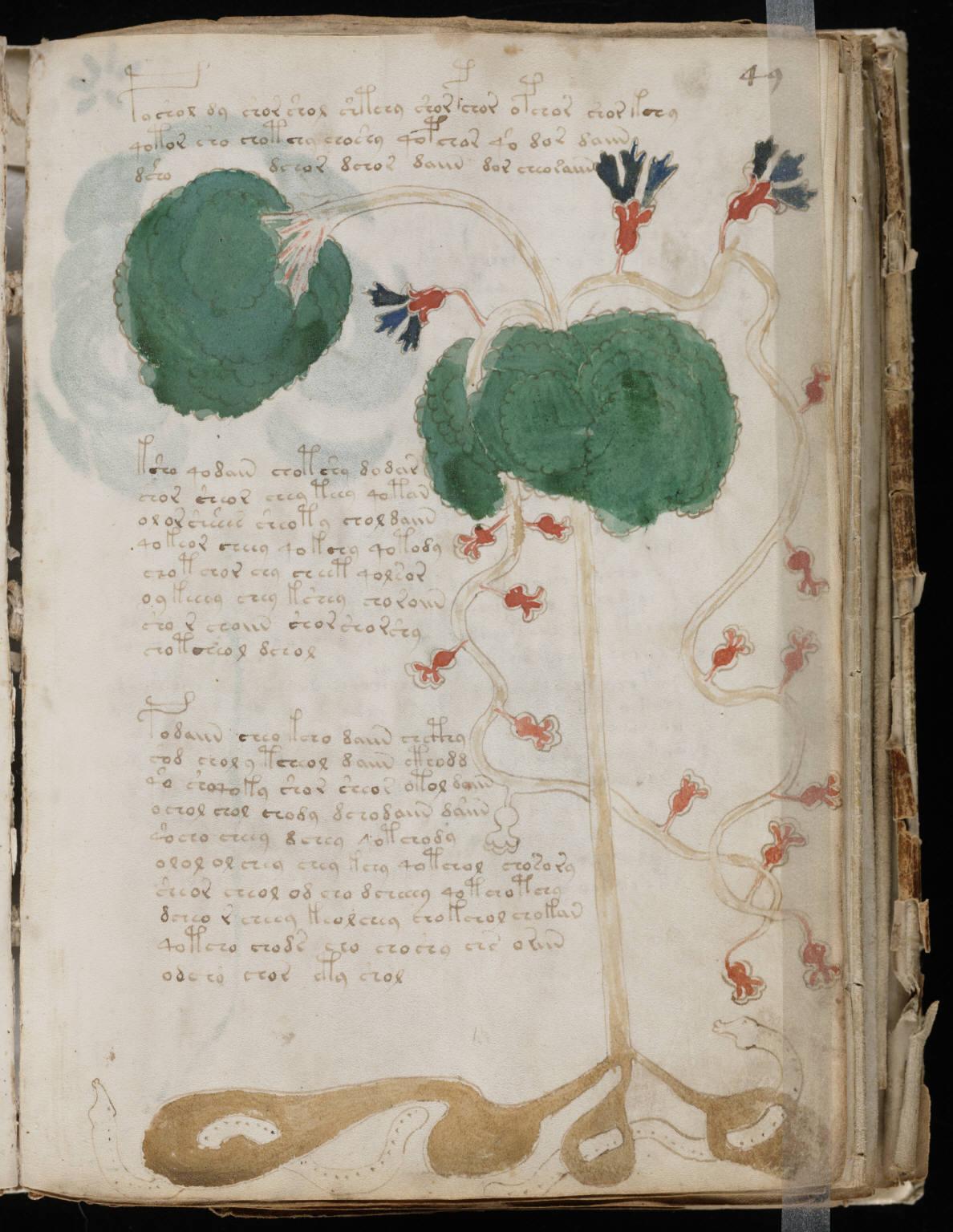 manuscrito095