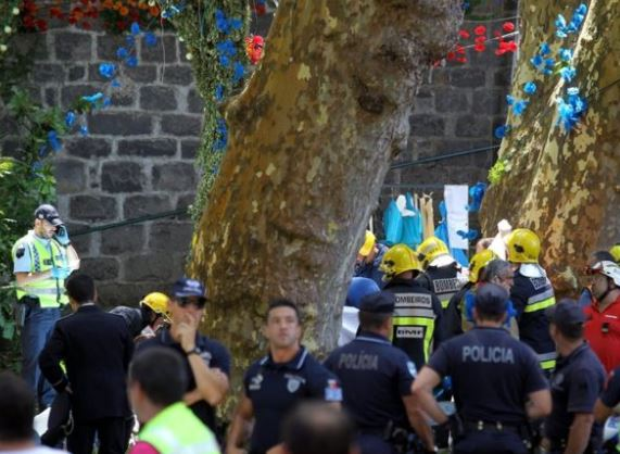 200 year old tree falls and kills 11 people in Portugal