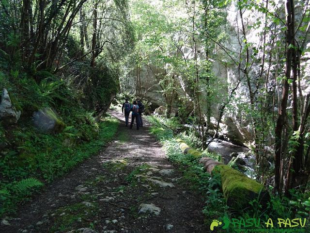 Camino ascendiendo a Serandi