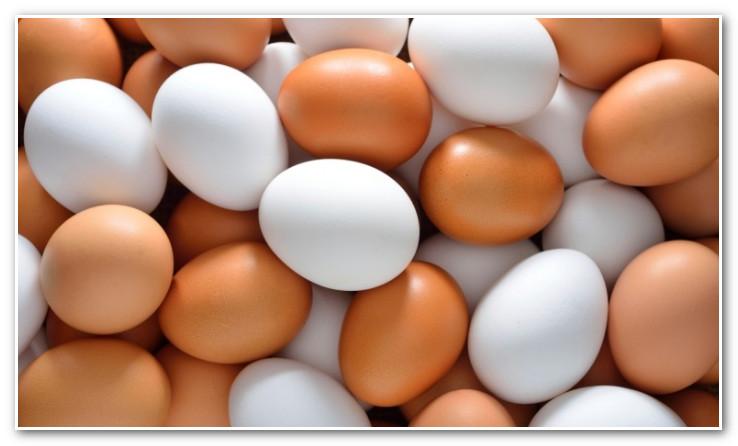 المغاربة يستهلكون سنويا 5 مليارات ونصف بيضة