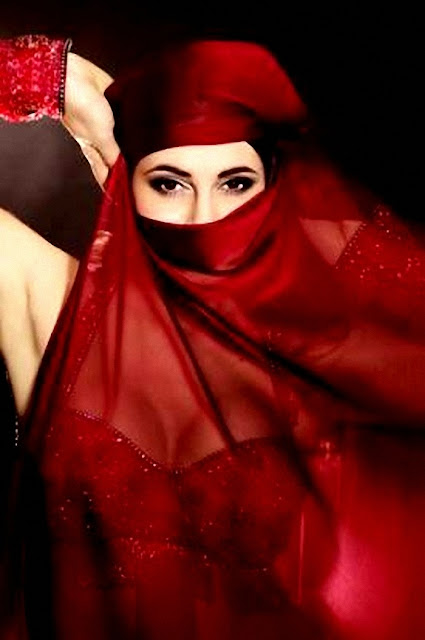 valls_burkini_arrêté_conseil_etat_islam_musulman_voile_hidjab_tchador_burka_villeneuve_loubet_nice_cannes_interdiction_islamophobie_manuel_hollande_france_de_beauvoir_yourcenar_belly_dance