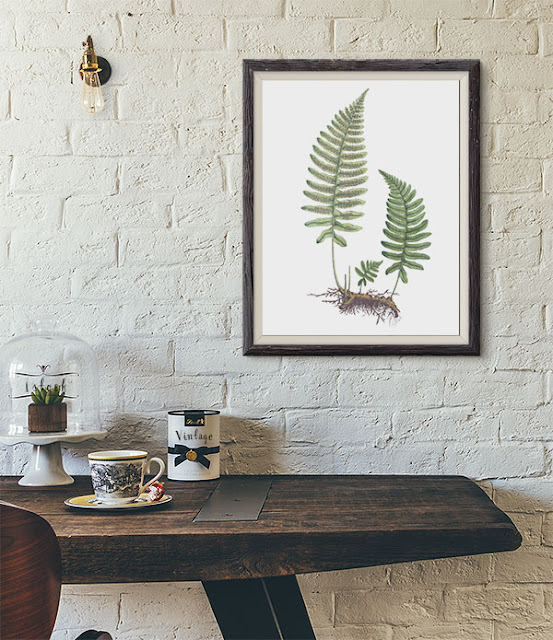 fern clipart botanical illustration - etsy