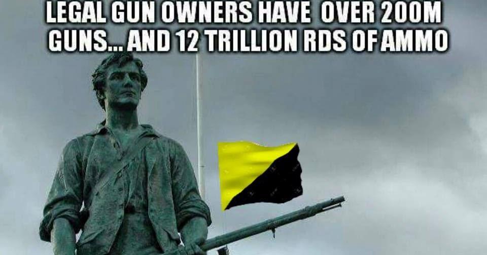 protect lawful gun owners - 960×504