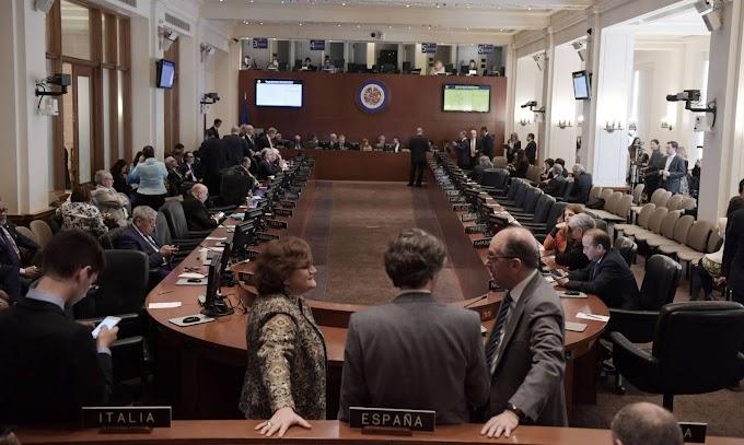 19 países declaran en la OEA una violación del orden constitucional en Venezuela