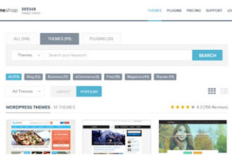 Best Wordpress theme store – My ThemeShop Theme store