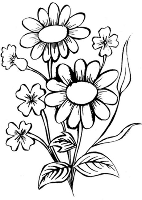 Desenhos Para Colorir 042015