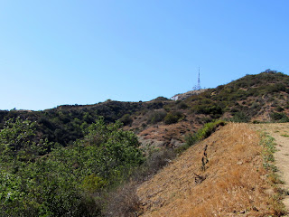 View west from Brush Canyon Trail toward Mt. Lee