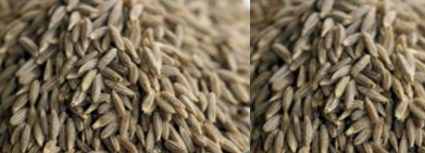 Cumin Seeds / Jeera Helps treating Anaemia
