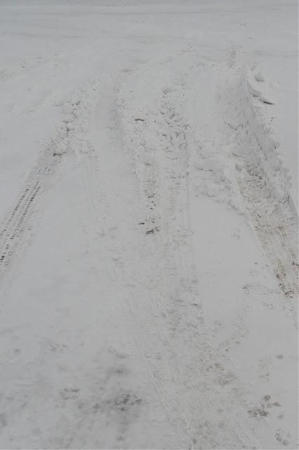 Griggs Dakota: Winter Continues in GriggsDakota