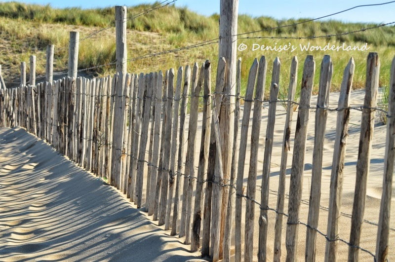 Wooden fence at Kijkduin Beach