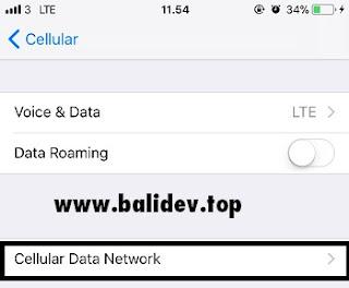 Pengaturan Celluler Data Network iPhone