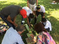 Team Building Games Johannesburg