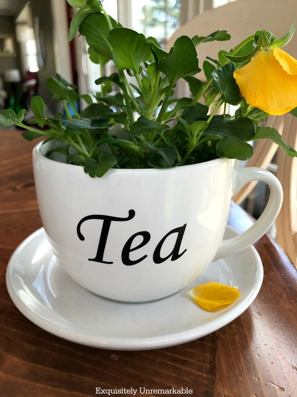 Tea Cup Planter DIY