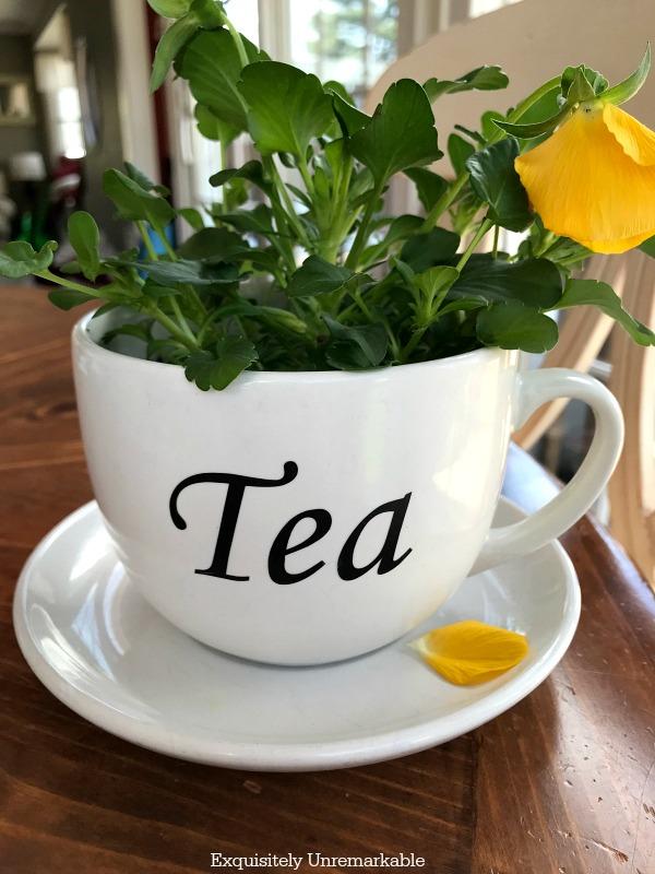 Tea Cup Planter DIY