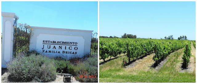 Visita a vinicola Familia Deicas - Montevideo, Uruguai