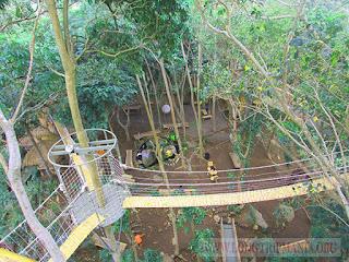 Rumah Pohon Bukit Lemped Karangasem
