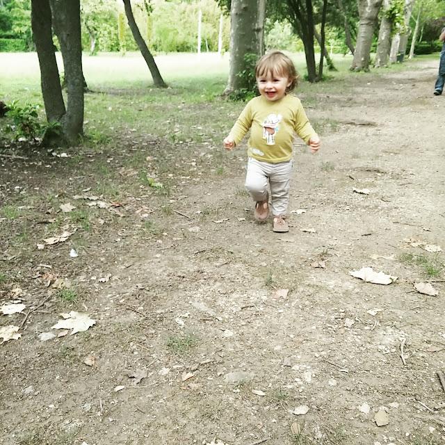 Le parc du Chai du Terral