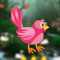 AVM Rescue Little Bird Game