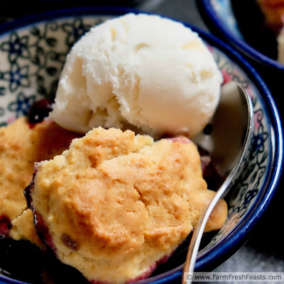 photo of a bowl of fresh cherry and blueberry cobbler with vanilla ice cream