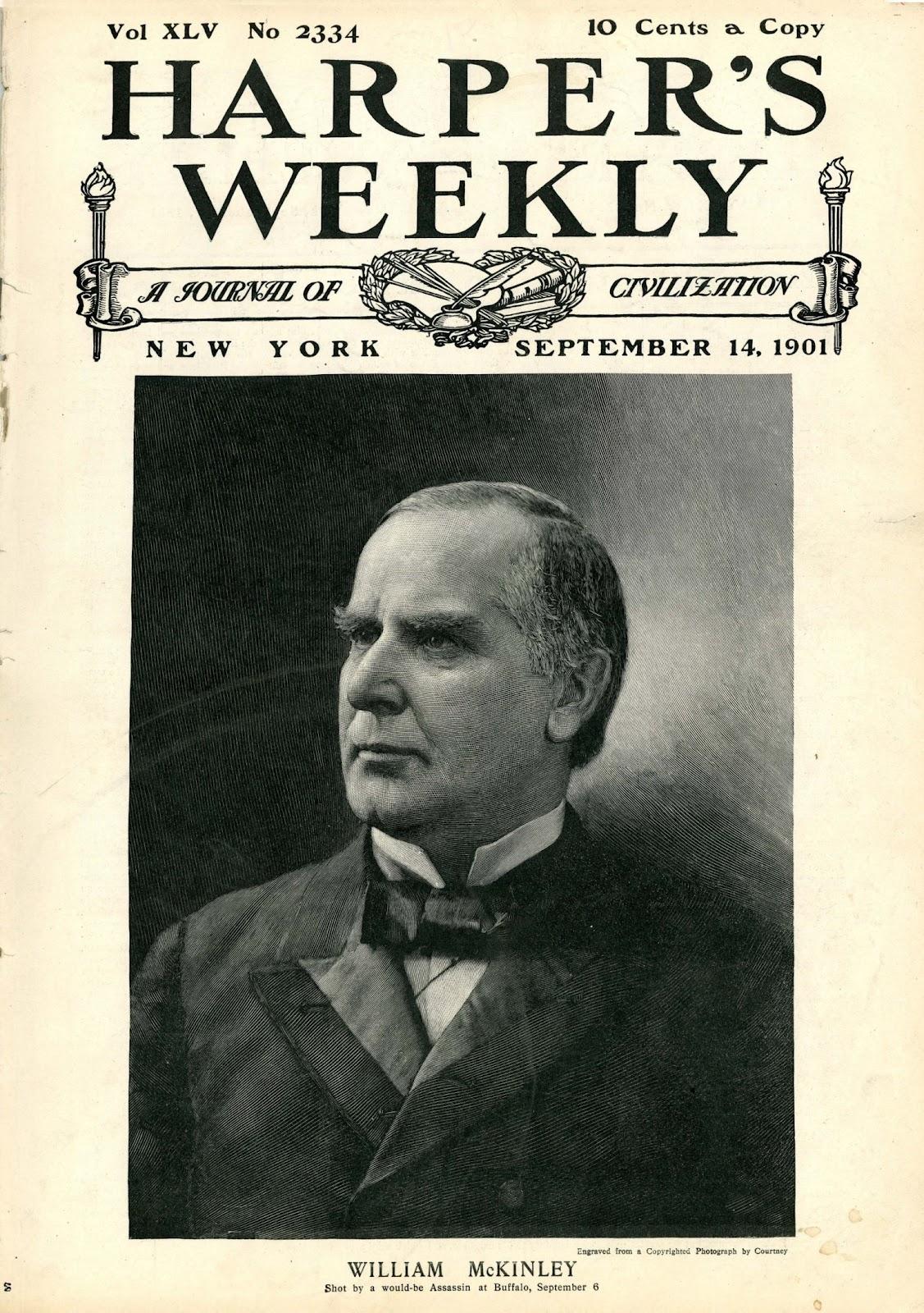William mckinley essay