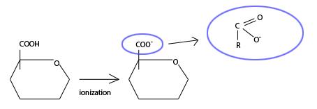 functional groups of pathogenic bacteria
