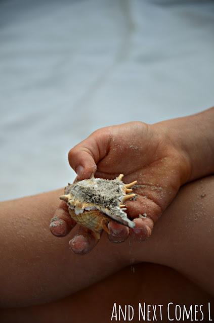 Playing with sand dough and seashells