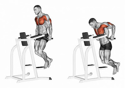 How To Get Chest Pump In Gym!