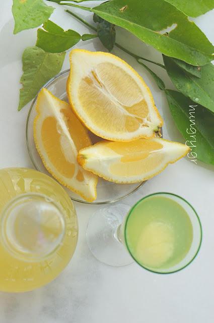 Φρέσκο Σιρόπι Λεμονιού