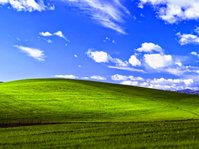 The Default Wallpaper of Microsoft Windows XP