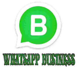 whatsapp introduced whatsapp business as stand alone application