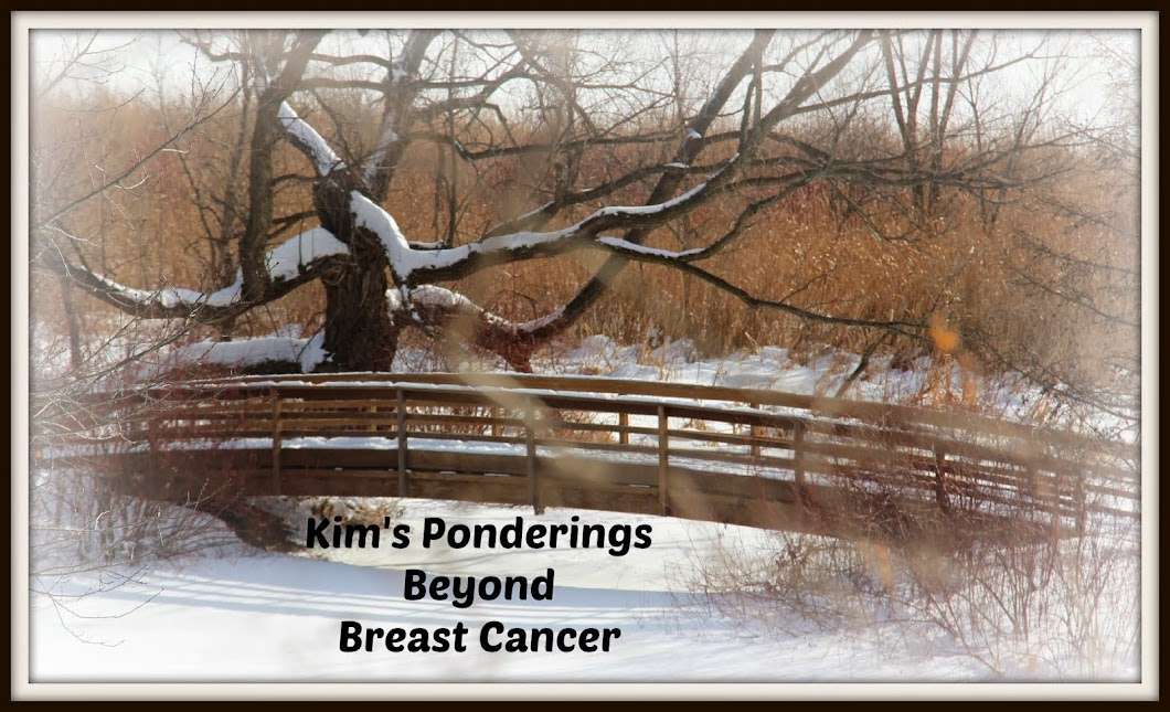 Kim's Ponderings Beyond Breast Cancer