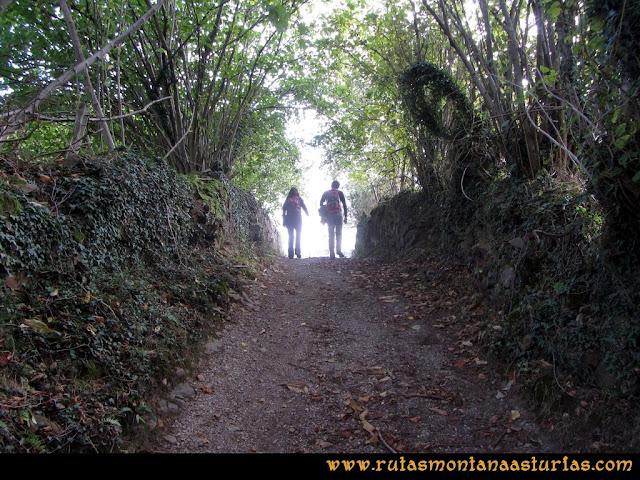 Ruta al San Justo o Cogollu: Camino a la Campa Urbiés