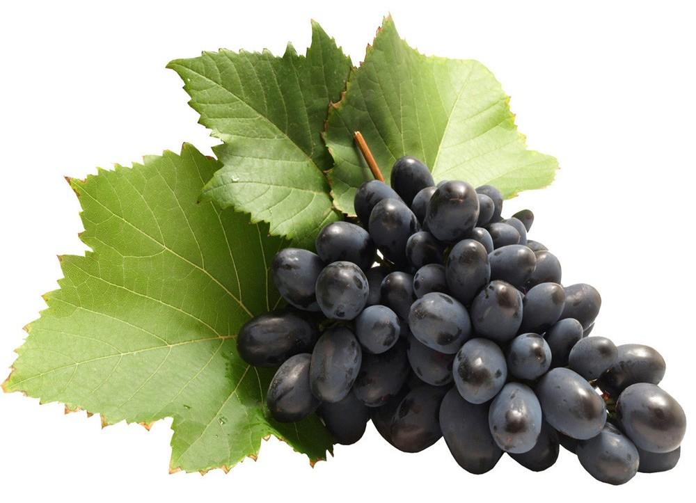 Manfaat Anggur Hitam