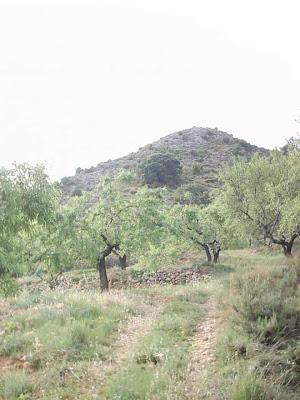 La pileta, camino, pantano de Pena, embalse, finca, almendros, olivos 34