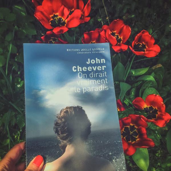 On dirait vraiment le paradis - John Cheever